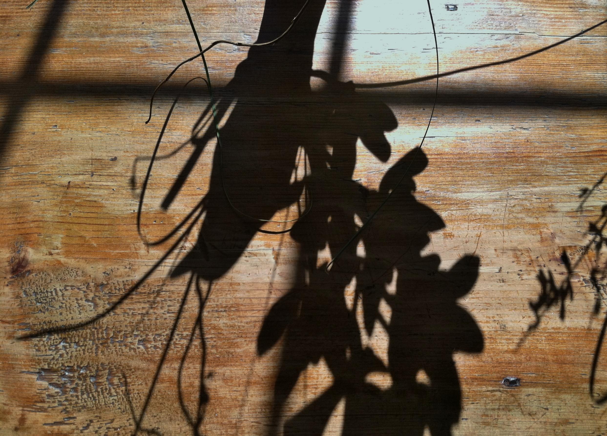Shadow arrangements