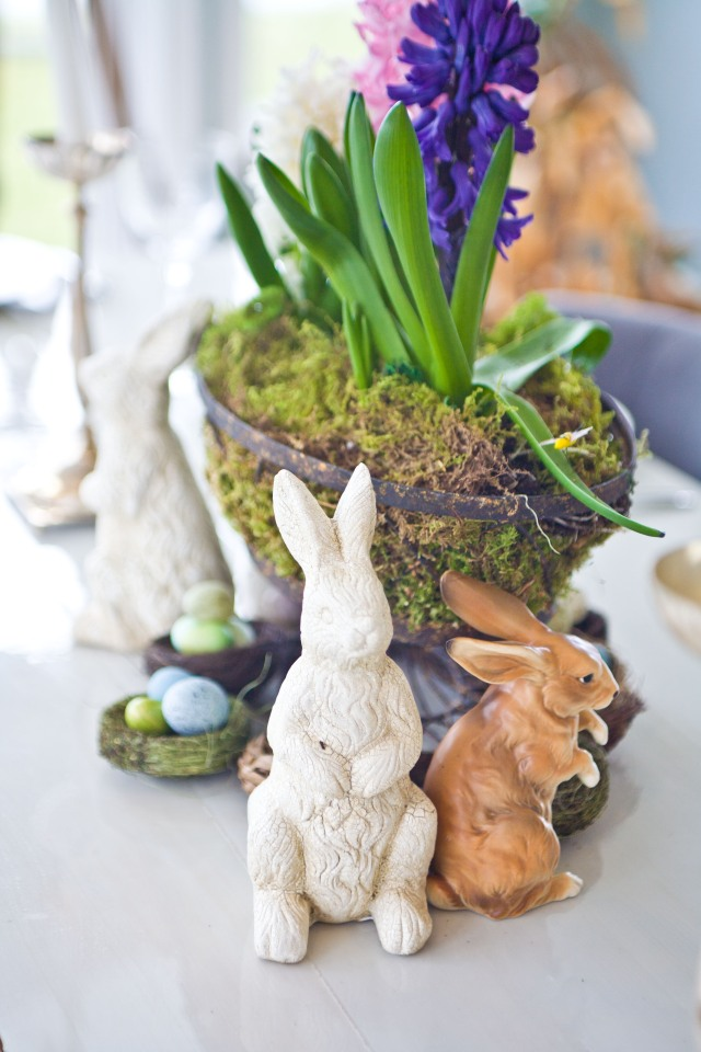 Bunny-nest-flowers...perfection