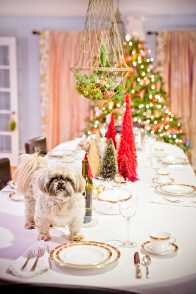Olive Celia Bedilia VP checking out the Christmas table