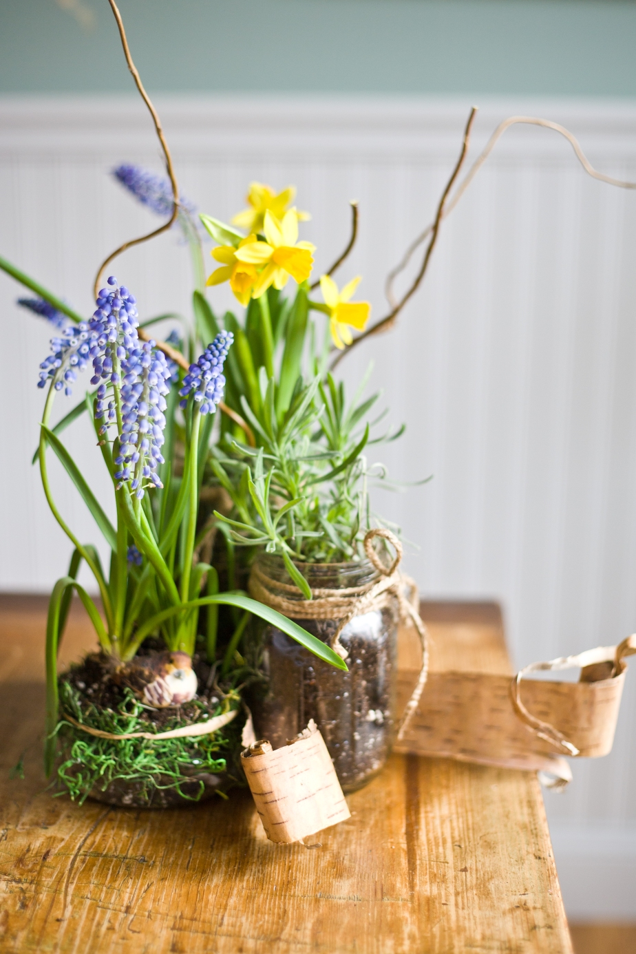 Winter Outside Bringing You Down? Indoor Spring Container Gardens Can Change That!