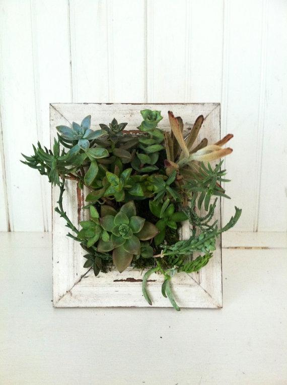 Vertical Flora $55