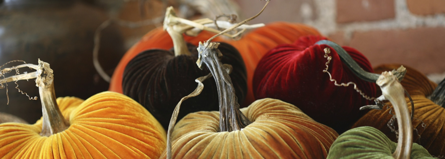 pumpkins1_large