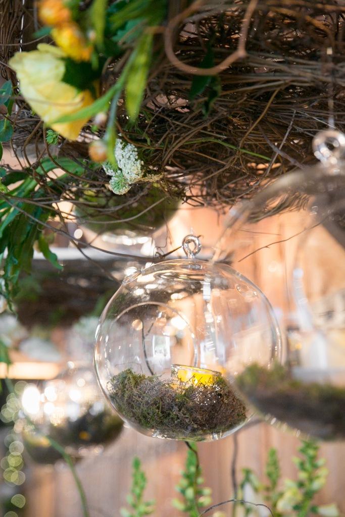 celiabedilia.com photo: Liz Donnelly